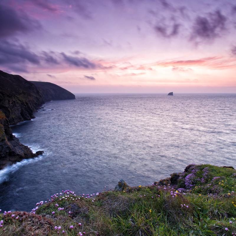 British Isles & Short Cruises